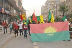 PJAK Youth Committee launched a petition campaign for Ocalan's freedom