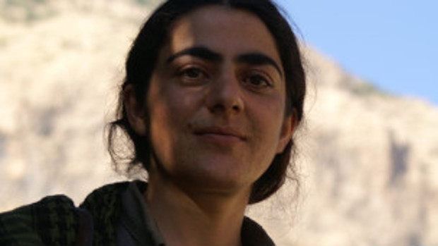 Co-Chair of PJAK: Attack on Kobanî is International Conspiracy