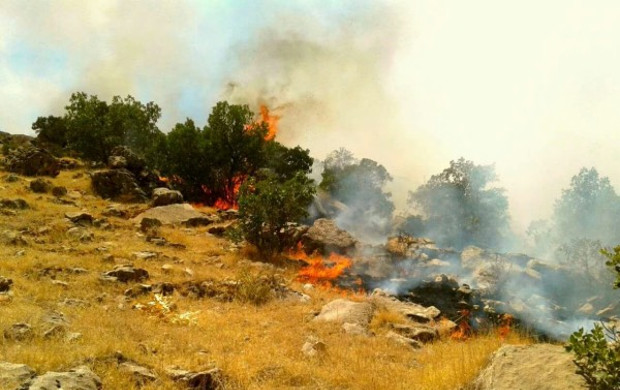 Maneuver of the IRGC led to a massive fire in Şaho mountains